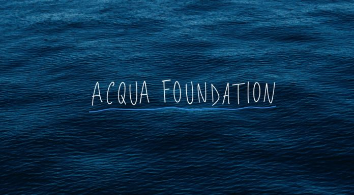 Acqua Foundation – Michael Wang